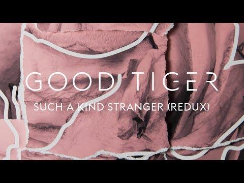 "Good Tiger ""Such a Kind Stranger (Redux)"" (Blacklight Media)"