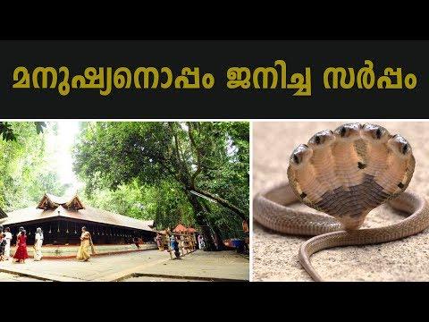 മണ്ണാറശാല മാഹാത്മ്യം   Mannarasala Sree Nagaraja Temple