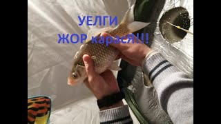 УЕЛГИ АТАКА КАРАСЯ!!! Зимняя рыбалка 16-17 февраля 2020. Устали вытаскивать...