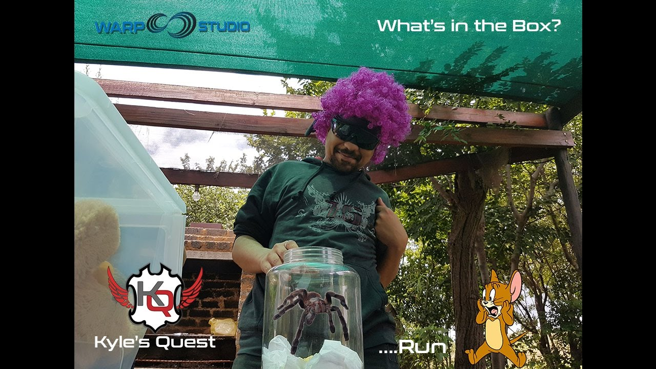 f253f6bf73 Kyle s Quest EP12 - Whats In The Box  - YouTube