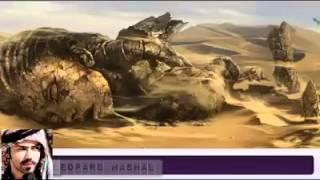 Islami video - Stafaband