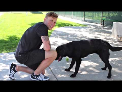 Gus Kenworthy Interview at the Humane Society of Utah - YouTube