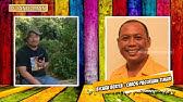 Mengenal Kampung Janda Di Pasuruan Penghuni Bisa Tinggal Secara Gratis Sis 14 03 Youtube