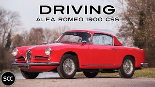 ALFA Romeo 1900 CSS 1955 - Full test drive in top gear - Engine sound | SCC TV