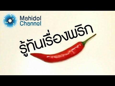คลิป MU [by Mahidol] รู้ทันเรื่องพริก ส่วนไหนของพริกที่เผ็ดที่สุด วิธีการแก้อาการเผ็ดที่ดีที่สุดคือ