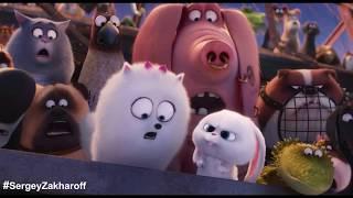 Приколы из мультфильма - Тайная жизнь домашних животных 2016 (прикол 6)