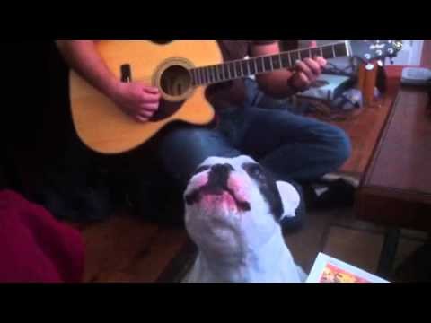 Daddy, I Wanna Sing Too!