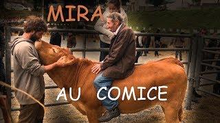 Mira Au Comice