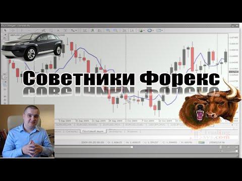 Советники форекс: Как установить и настроить советники форекс  для Metatrader 4.