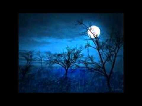 Vogel als Prophet (Bird as Prophet) from 'Waldszenen Op.82' (Forest Scenes) by Robert Schumann