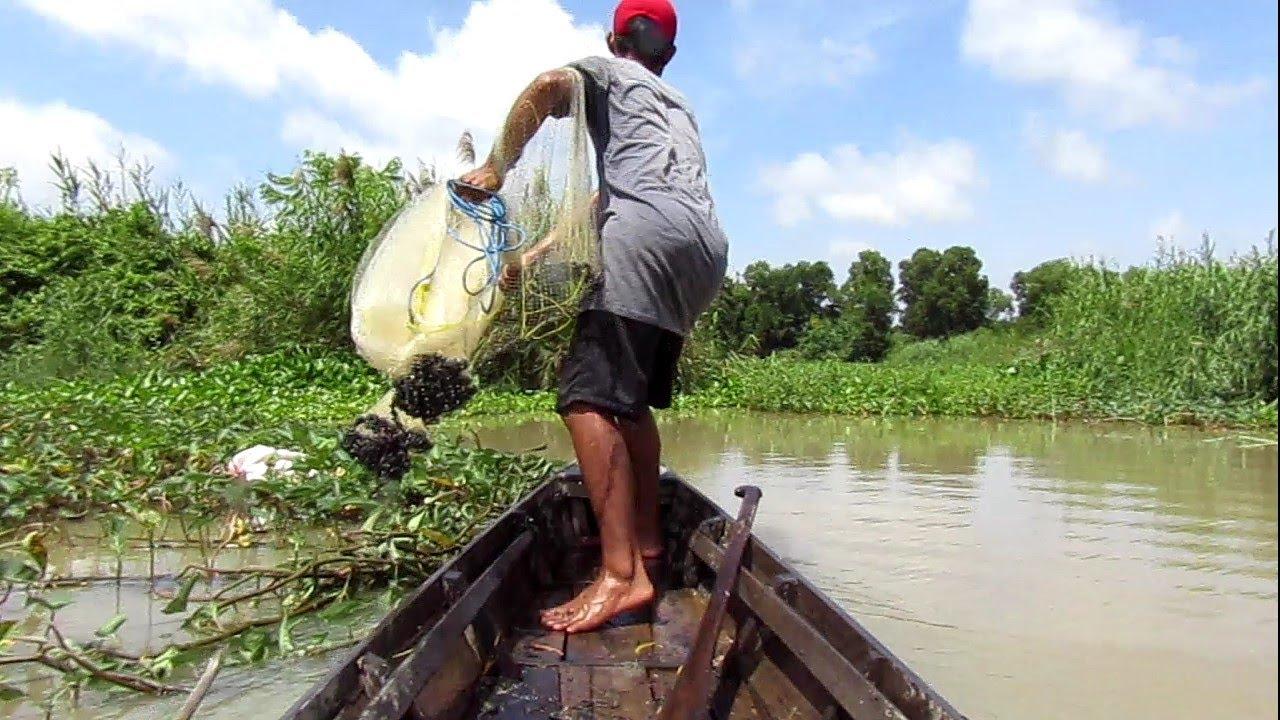 Download jala ikan,pakai perahu sebentar aja,,,lihat hasilnya/fishing nets