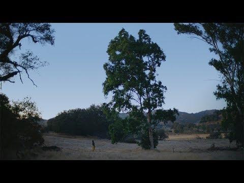 Allbirds: Meet Your Shoes - Tree Meeting (Full-length)