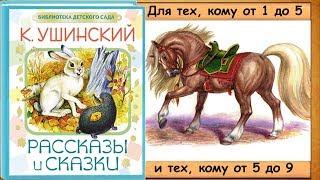 РАССКАЗЫ о животных, птицах, растениях. - 2-я часть книги (К Ушинский) - читает бабушка Лида