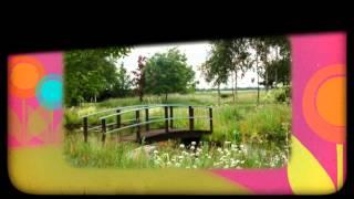 Необычный ландшафтный дизайн проект участка в 20 соток: фото и видео пример