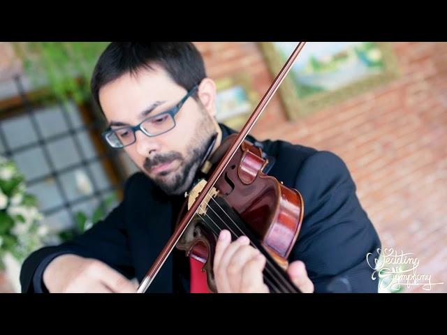 Arpa, Violino e Voce
