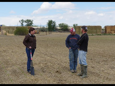 Carson Hessenthaller | Soil Management on Wyoming Farms and Ranches