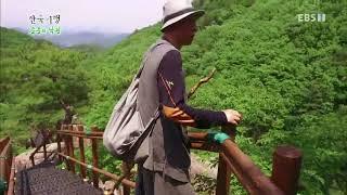 한국기행 - Korea travel_은둔의 낙원 3부 왜 산으로 오셨나요_#001