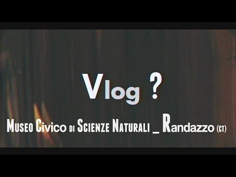 Vhs LOG (?) 01_  Museo Civico di Scienze Naturali _ Randazzo