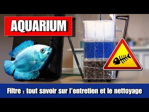filtre d'aquarium , comment ça marche ✔