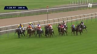 Vidéo de la course PMU PRIX DE LA CHAMBRE DE MONSIEUR-LE-PRINCE