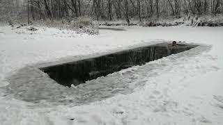 Зимнее плавание.