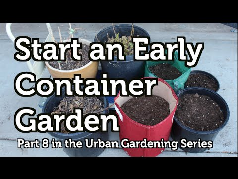 Start A Simple Container Garden Early