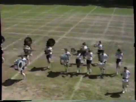 Wayne Memorial High School Fight Song  - 1982