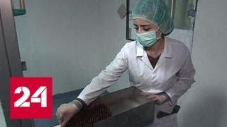 Возвращение к жизни: в Сирии снова заработал завод по производству медикаментов - Россия 24