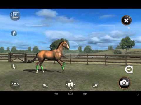Обзор на игру My Horse 1 часть