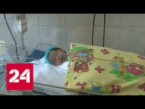В Питере пес спас новорожденную малышку - Россия 24