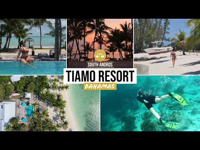 TIAMO South Andros: Bahamas Best Kept Secret ♥ SLH Luxury Resort