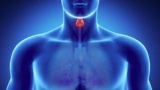 La Glandula Tiroides y la Autoestima
