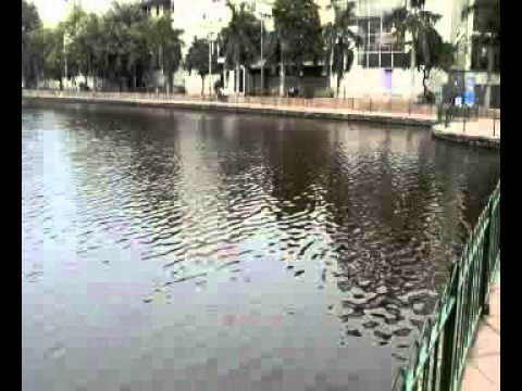 Naini Lake Fun Places To Go in Model Town,Delhi NCR Video