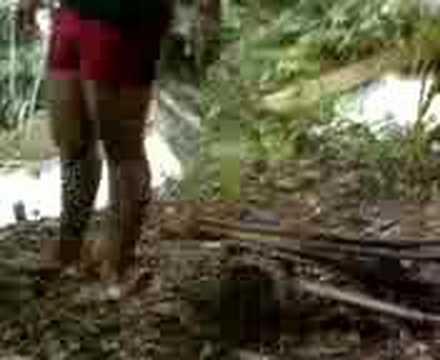 Escort Profesional En Candelaria Campeche