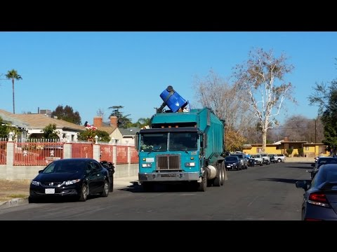 L.A.B.O.S: Amreps on Post Christmas Recycling