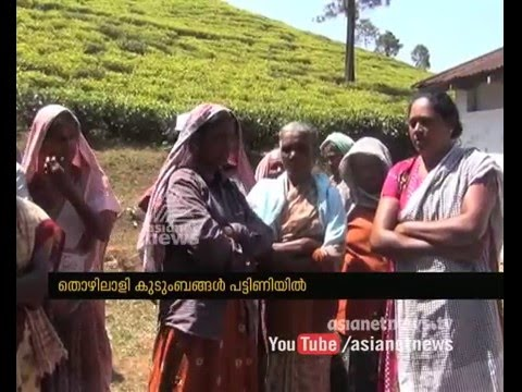 Lease agreement break : Tea plantation closed in Peermade Idukki | FIR 02 Apr 2016