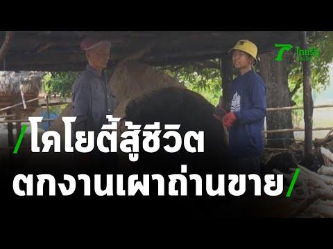 โคโยตี้สู้ชีวิต ตกงานกลับบ้านมาเผาถ่านขาย   29-04-64   ข่าวเที่ยงไทยรัฐ