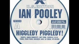 Ian Pooley - Higgledy Piggledy (1997)