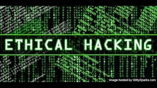 Whitehat Hacking and Penetration Testing Tutorial: Using Wireshark To Examine Packets