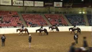 Naturally Golden #8929 - 2011 All American Quarter Horse Congress