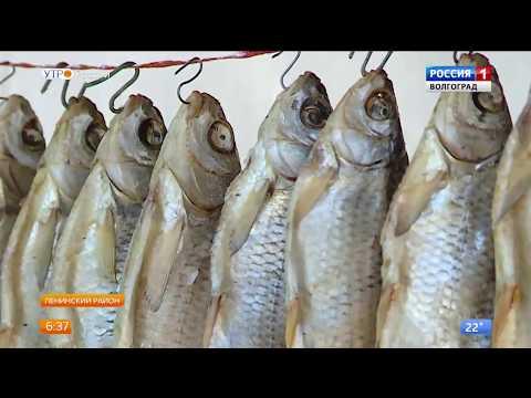 Как правильно вялить рыбу