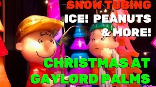Christmas at Gaylord Palms 2016 highlights with ICE! A Charlie Brown Christmas, Snow Tubing, more!