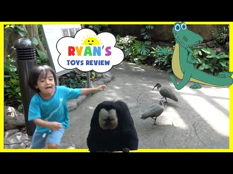 KIDS Family Fun Trip to Rainforest Animals for Children Toys for Kids Video Ryan ToysReview