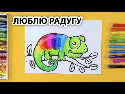 ХАМЕЛЕОН в РАДУГЕ / Люблю Радугу