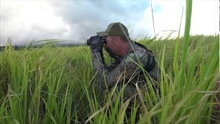 Reaping Hawaii Part 3, The Kill Shot