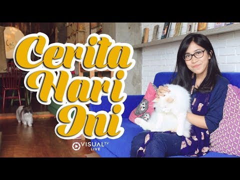 The Cat Cabin, Café Kucing Penghilang Stres di Jakarta
