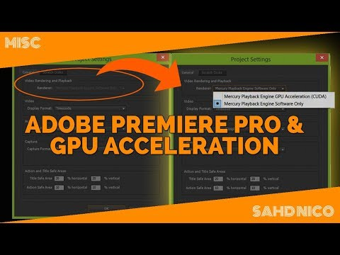 How to Use Graphic Card in Adobe Premiere Pro GPU Acceleration | VLOG #20