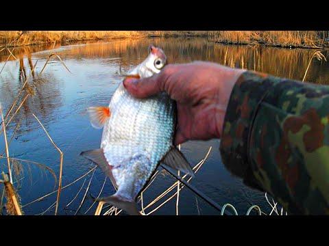 рыбалка фидером на реке ранней весной