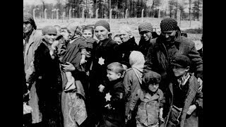 A Chilling Account of U.S. Indifference to the Plight of European Jews (2002)