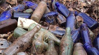 Found a Blue Bird in a Huge Bottle Dump!